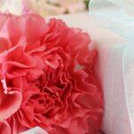 花以外に贈る母の日の人気プレゼントはこれ!50代60代70代の母が喜んだプレゼント実例