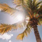 日焼け止めの選び方をシーン別にご紹介!賢い紫外線対策を